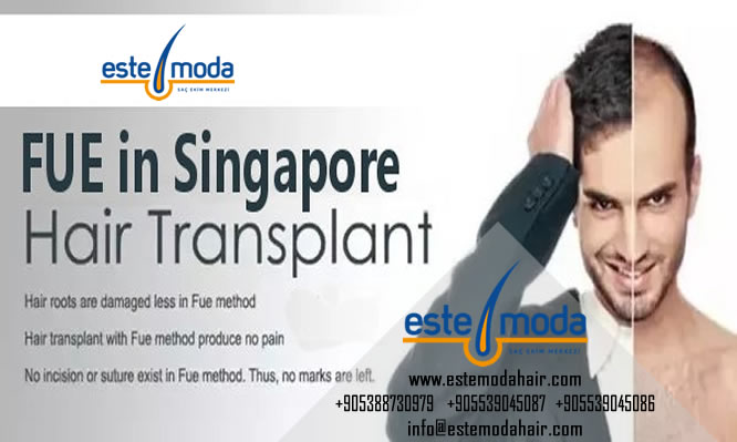 Hair Transplant Through Stem Cells
